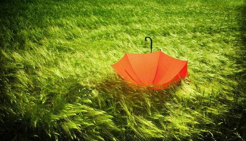 ИгроКлуб Оранжевый зонтик. Развивающий игры для детей