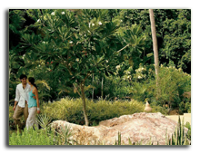 Малайзия. Лангкави. Four Seasons Resort Langkawi