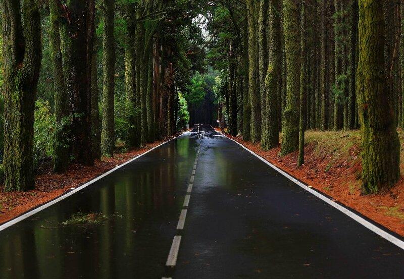 Настало время офигительных дорог