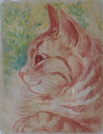 Шизофрения и кошки