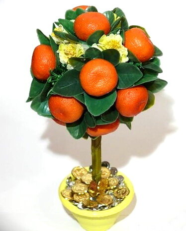 Декоративное мандариновое дерево своими руками 30