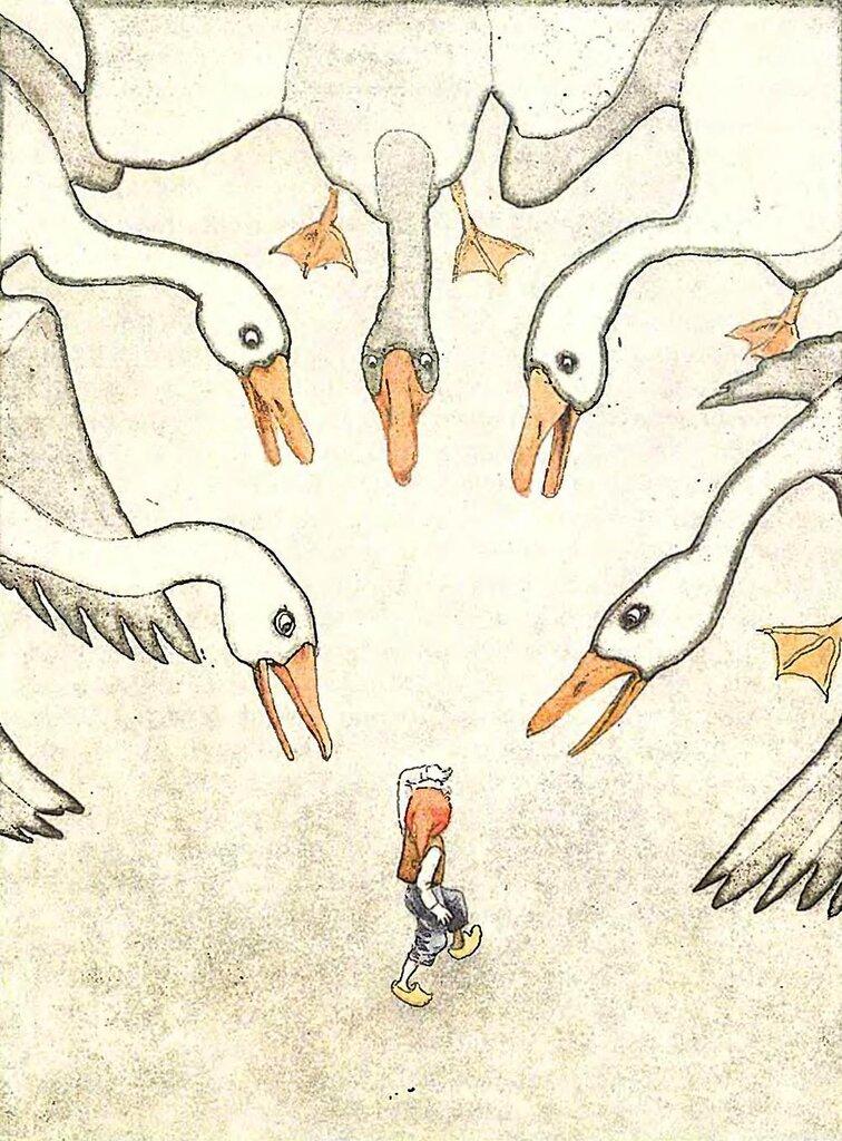 Раскраски нильса с дикими гусями