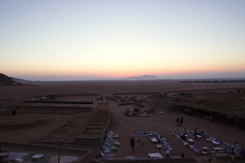 сафари в египте
