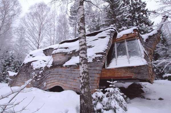 Домик из груды дров