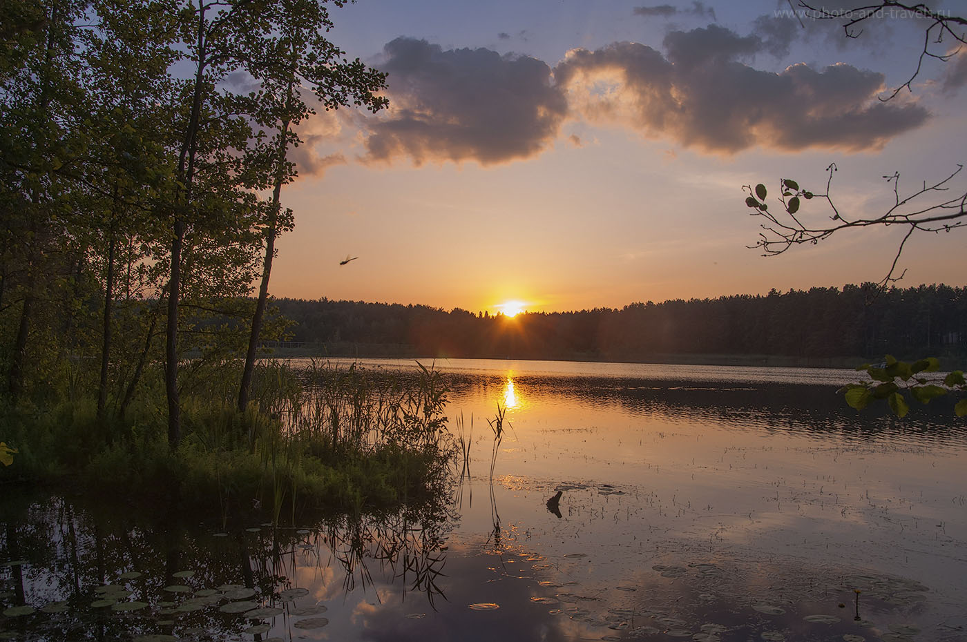 17. Вечер на болоте (образец фото, снятого на Никон Д90 КИТ 18-105 со следующими настройками: 1/80, 0 eV, f/8, 22 мм, ИСО 200)