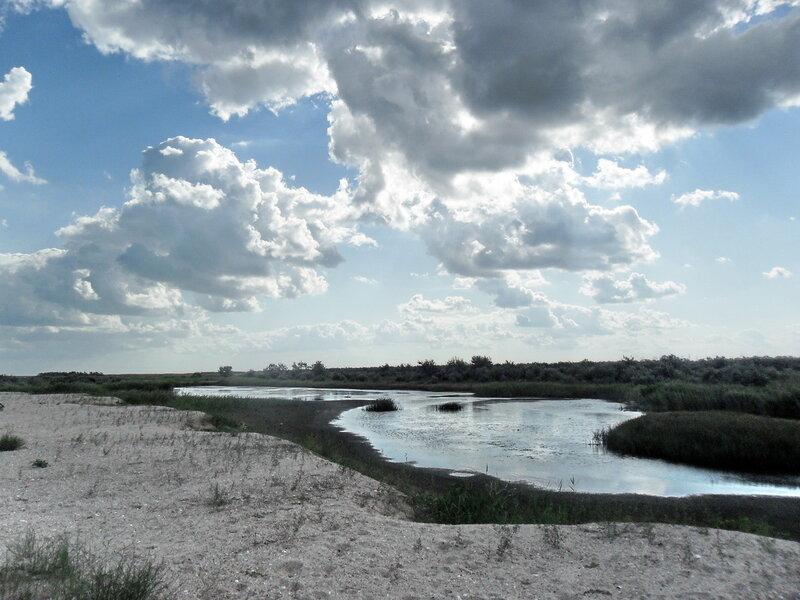 В походе, август 2011, берега Азовского моря