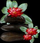 цветы (87).png