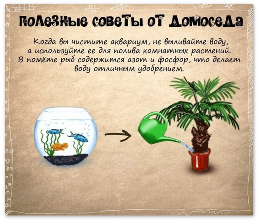 http://img-fotki.yandex.ru/get/6616/128733247.54/0_106364_a3f5d2ad_orig.jpg