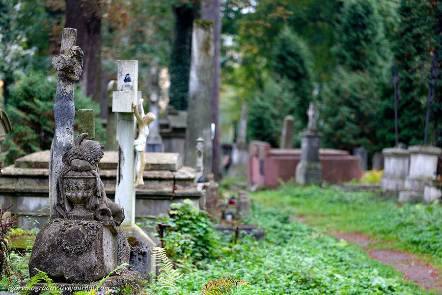 Кладбище, интересное место для прогулки.