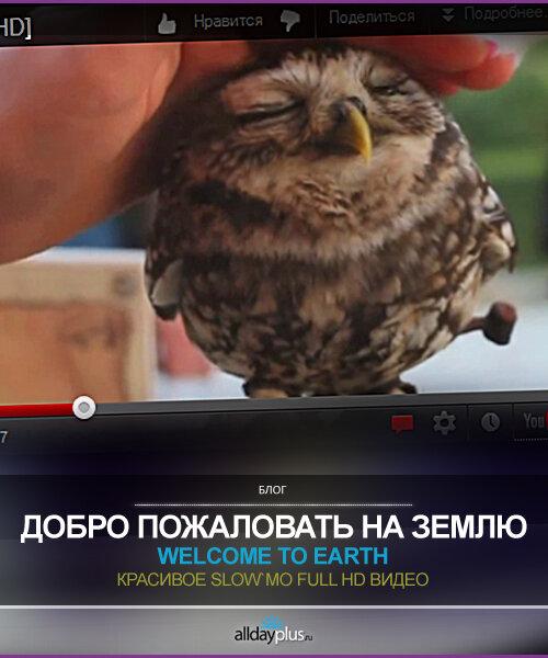 "Видео дня, месяца, года,.. ""Добро пожаловать на Землю"" - Welcome to Earth. Одно классное Full HD видео."