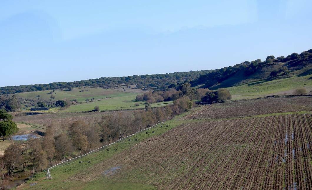 Южная Португалия. Январь