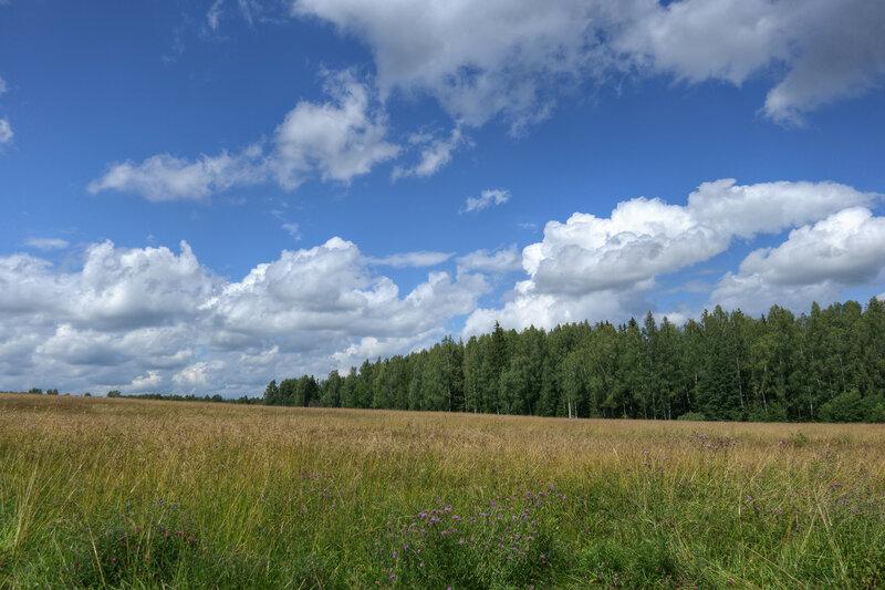 Очарованье русского пейзажа