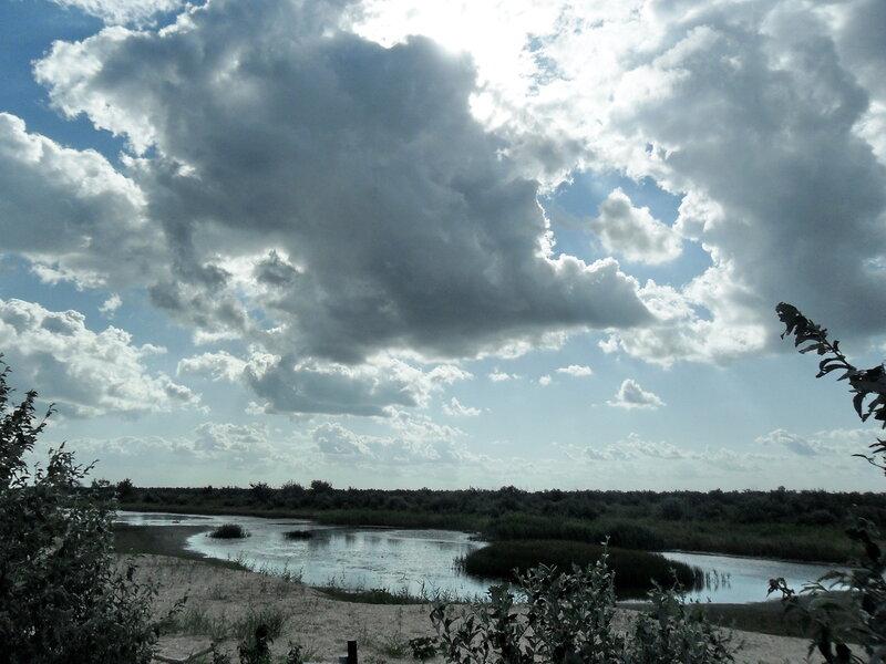 На Азовских берегах, август 2011