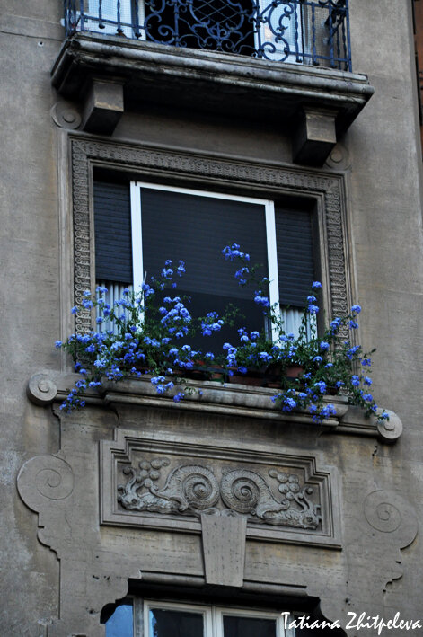 окна коппеде7