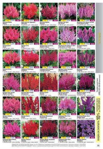 Каталог «Весна 2013!» Открыт приём заказов! www.gardenshop.ru