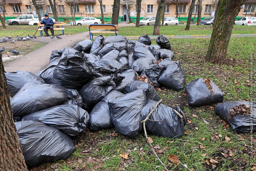 собранная павшая листва в мусорных мешках в Москве