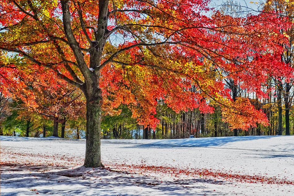 красивые картинки осенних месяцев