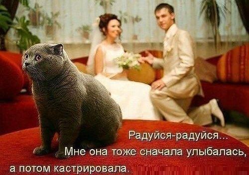 http://img-fotki.yandex.ru/get/6617/173197954.1/0_a652e_ee89c65e_L.jpg