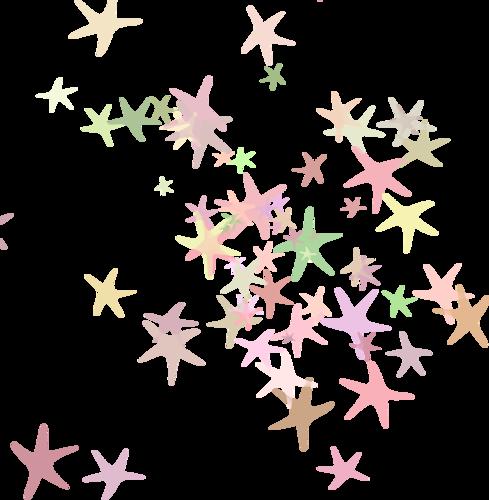 россыпи морских звезд
