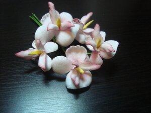 Орхидеи       - Страница 3 0_a214a_4e7262ae_M