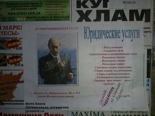 Путин рекомендует юриста блог оптимизация оптимизма