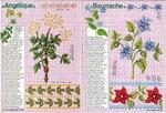 Encyclopedie du point de croix_5.jpg