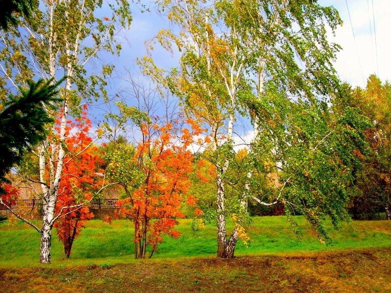 Ах, осень, залюбуешься тобой!!!