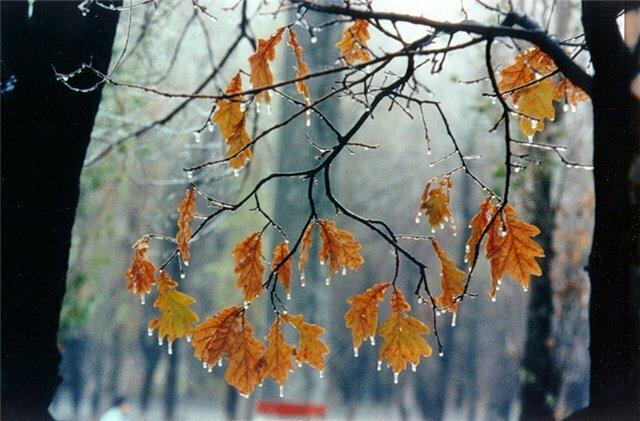 Песня разноцветная осень т морозовой скачать мп3