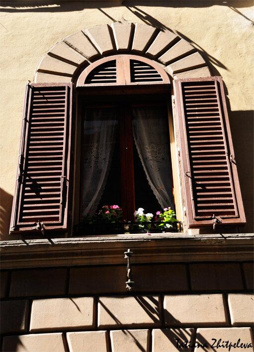 окно сиены