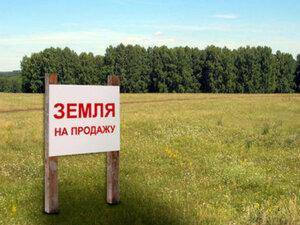 Процедура оформления земли для предпринимателей в Приморье должна быть упрощена