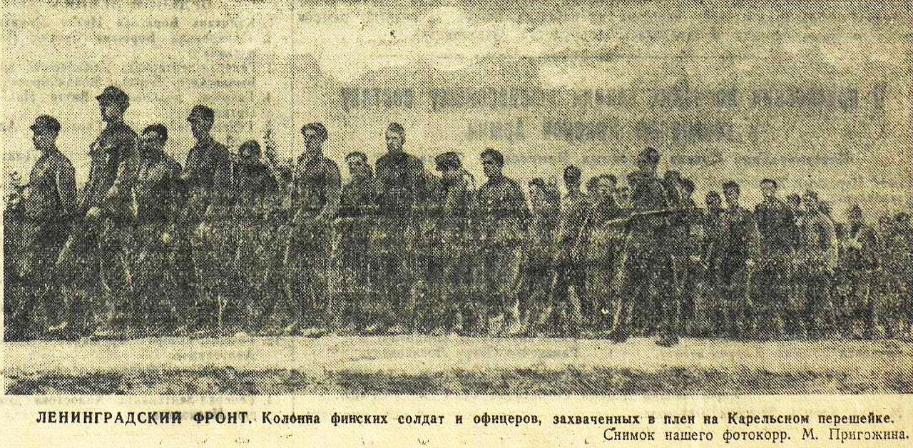 линия Маннергейма, союзники Гитлера, вассалы Германии, Финляндия в ВОВ