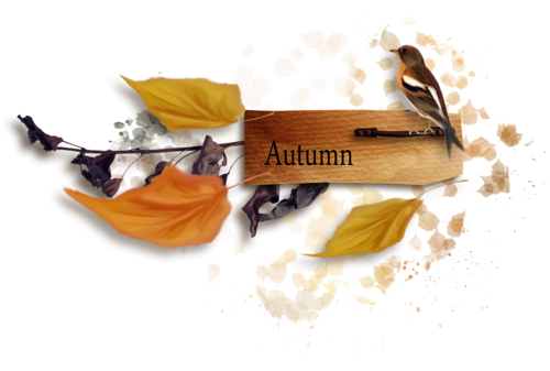 осень (4).png