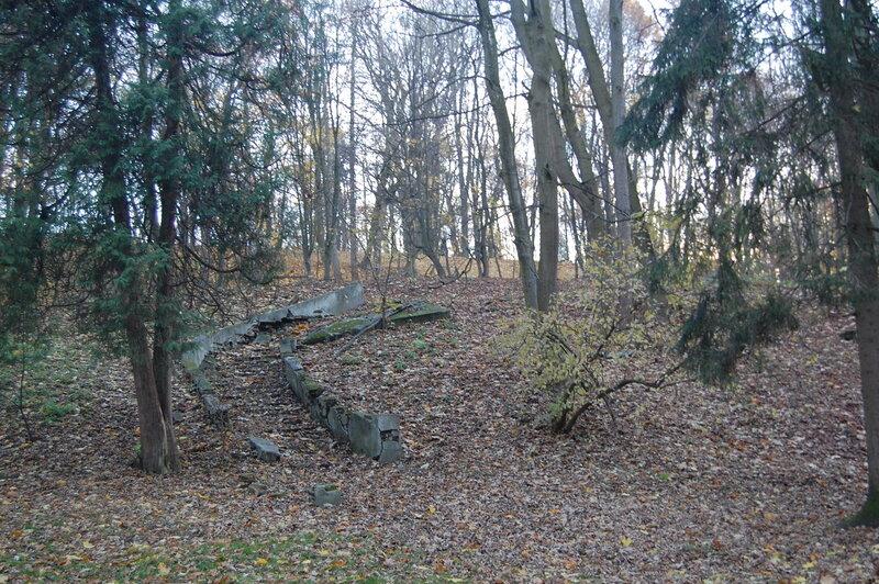 Осень в Стрыйской парке