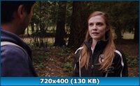 Портал юрского периода: Новый мир / Primeval: New World (1 сезон/2012-2013/HDTV/HDTVRip/WEBDLRip)