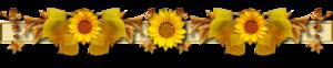 razdeliteli_ (79).png