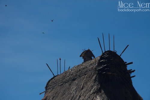 фигурки на крышах в деревушке Bena, Флорес, Индонезия