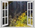 phoca_thumb_l_window-146.jpg