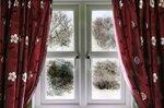 phoca_thumb_l_window-310.jpg