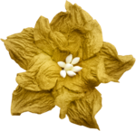 LaurieAnnHGD_AutumnGlow_Flower1.png