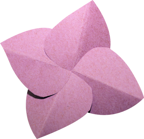 «Day Rose» 0_981d5_da344cc9_L