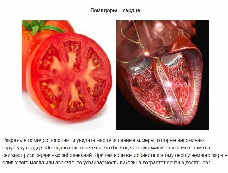 Какие овощи и фрукты полезны для спермы