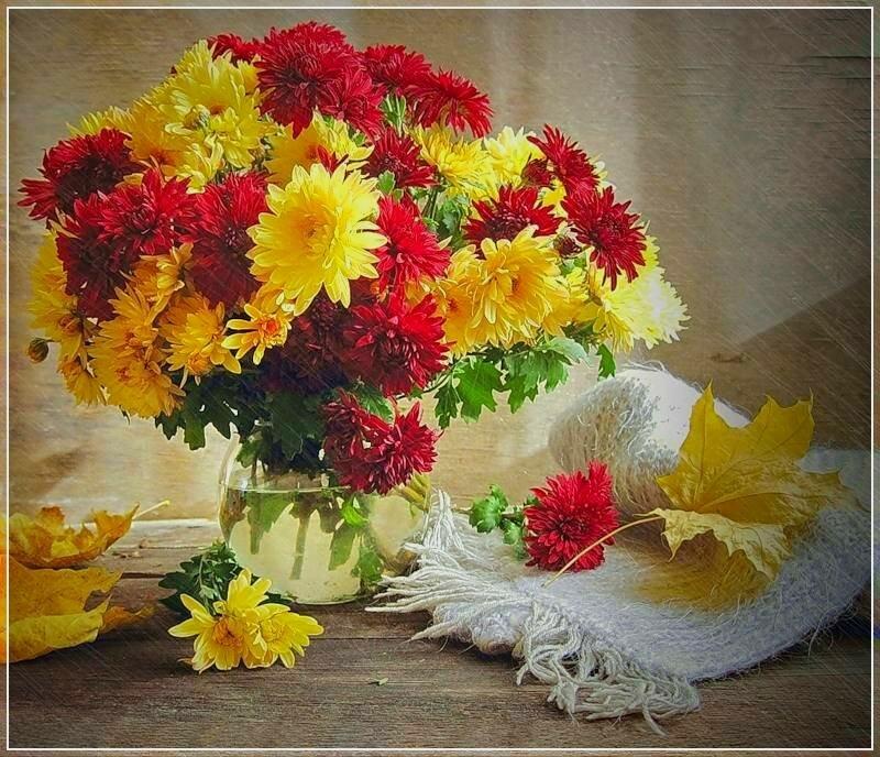 фото цветы зимние