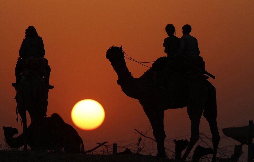 Силуэты покупателей со своими новыми верблюдами.