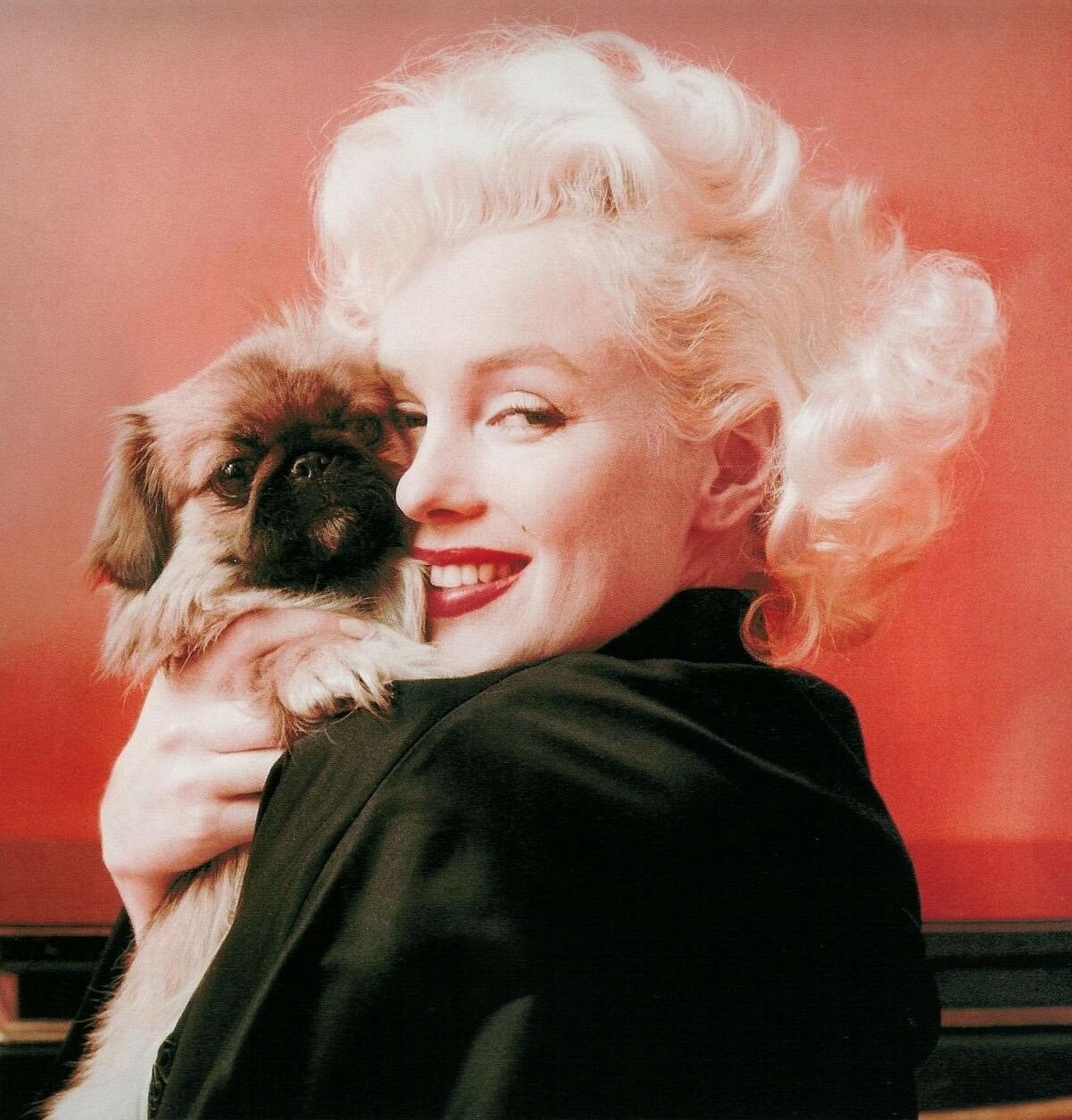 41 gorgeous pictures of Marilyn Monroe  MSN