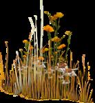 NLD Halloween Freebie Flowers cluster sh.png