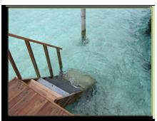 Мальдивы. Niyama Maldives 5*.