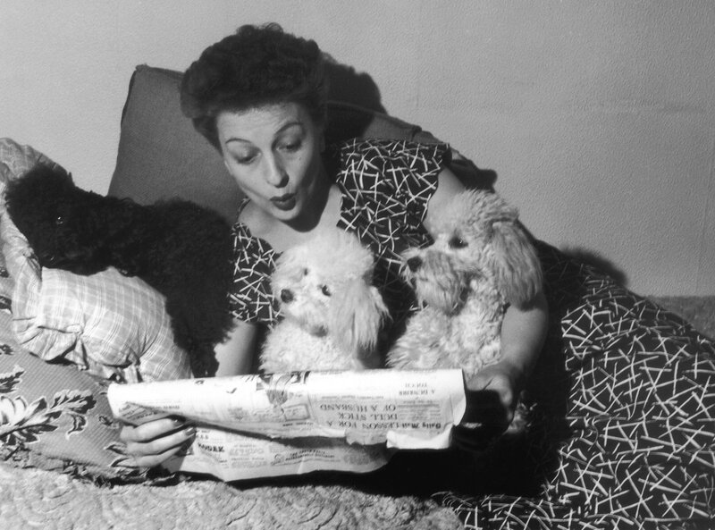 Betty Driver's Poodles