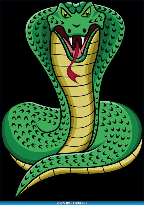 Cobra snake png