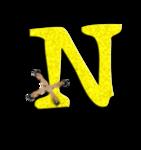 dote-n.png