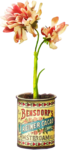 ldavi-bunnyflowershop-pottedflower4a.png
